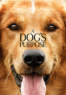 dogs purpose